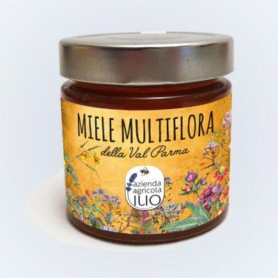 """""""miele millefiori dell'appennino"""""""